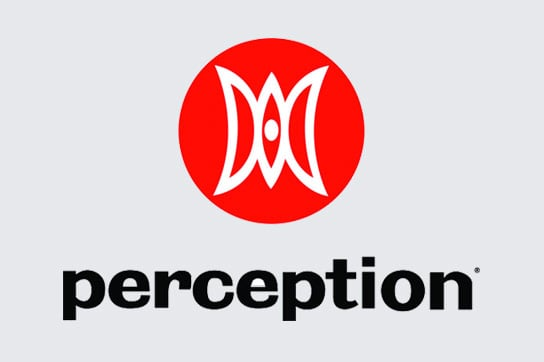 perceptionlogo